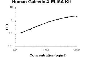 Image no. 1 for Lectin, Galactoside-Binding, Soluble, 3 (LGALS3) ELISA Kit (ABIN1672792)