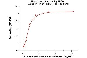 Image no. 2 for Poliovirus Receptor-Related 4 (PVRL4) (AA 32-349) protein (His tag) (ABIN6388277)