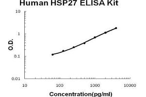 ELISA image for Heat Shock 27kDa Protein 1 (HSPB1) ELISA Kit (ABIN921115)