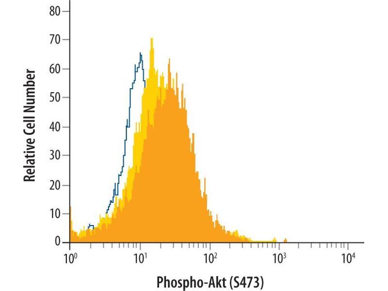Flow Cytometry (FACS) image for anti-V-Akt Murine Thymoma Viral Oncogene Homolog 1 (AKT1) (pSer473) antibody (ABIN4900619)