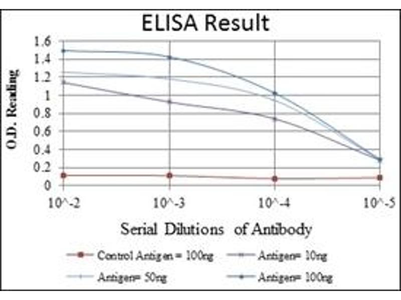 ELISA image for anti-Smooth Muscle Actin antibody (Actin, alpha 2, Smooth Muscle, Aorta) (ABIN1105231)