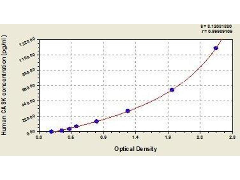 Calcium/calmodulin-Dependent serine Protein Kinase (MAGUK Family) (CASK) ELISA Kit