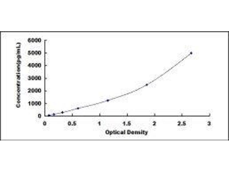 Teratocarcinoma-Derived Growth Factor 1 (TDGF1) ELISA Kit