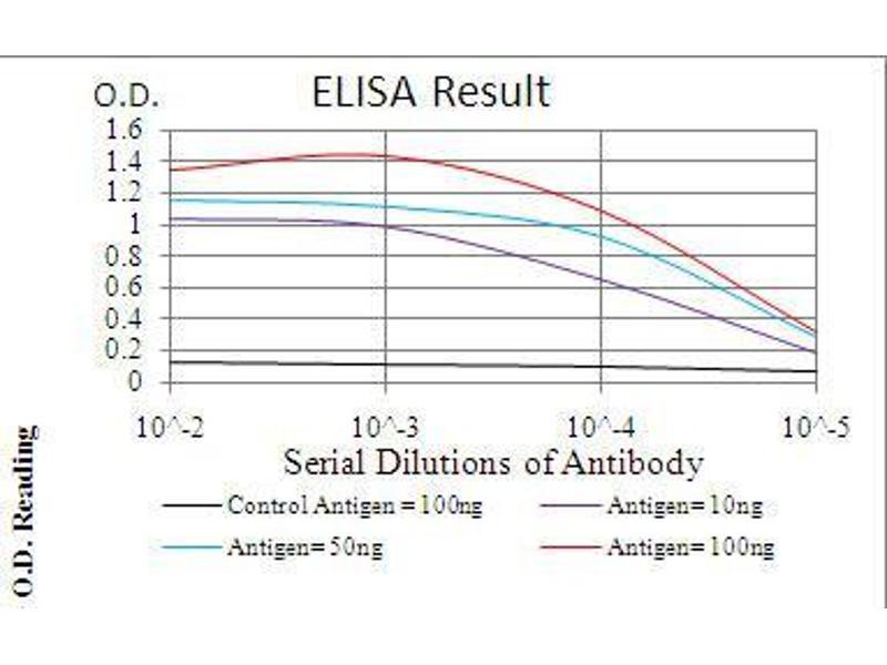 ELISA image for anti-Interleukin-1 Receptor-Associated Kinase 3 (IRAK3) (AA 454-596) antibody (ABIN4880792)