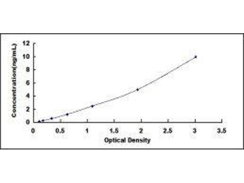 ADAM Metallopeptidase Domain 17 (ADAM17) ELISA Kit (4)