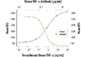 Neutralization (Neut) image for anti-Tumor Necrosis Factor (TNF) (AA 80-235) antibody (ABIN4900489)