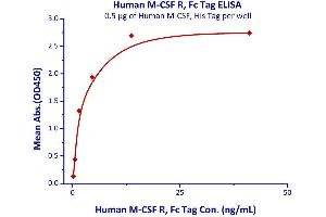 Image no. 2 for Colony Stimulating Factor 1 Receptor (CSF1R) (AA 20-512) (Active) protein (Fc Tag) (ABIN2180912)