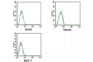Flow Cytometry (FACS) image for Rabbit IgG isotype control (FITC) (ABIN3023748)