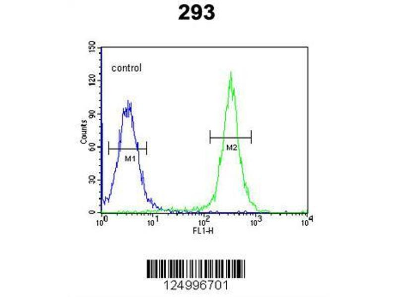 Flow Cytometry (FACS) image for anti-Gasdermin A (GSDMA) (AA 66-94), (N-Term) antibody (ABIN651081)