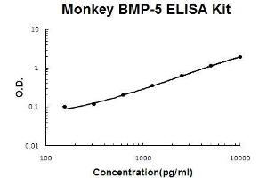 Image no. 1 for Bone Morphogenetic Protein 5 (BMP5) ELISA Kit (ABIN5510528)