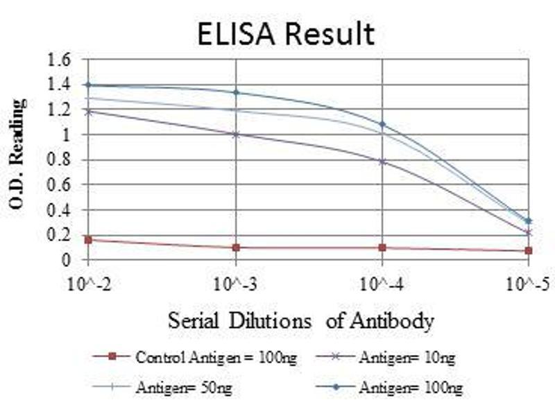 ELISA image for anti-Glutamate Receptor 3 antibody (Glutamate Receptor, Ionotrophic, AMPA 3) (ABIN969177)