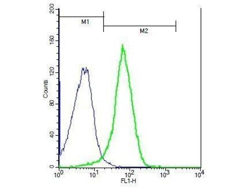 Flow Cytometry (FACS) image for anti-Interleukin 27 Receptor, alpha (IL27RA) (AA 35-80) antibody (ABIN749498)