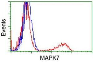 Flow Cytometry (FACS) image for anti-Mitogen-Activated Protein Kinase 7 (MAPK7) antibody (ABIN2454064)