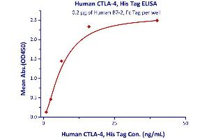 Image no. 2 for Cytotoxic T-Lymphocyte-Associated Protein 4 (CTLA4) (AA 37-162) (Active) protein (His tag) (ABIN2487344)