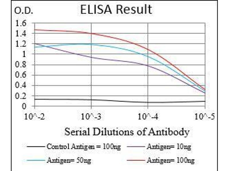 ELISA image for anti-Membrane Metallo-Endopeptidase (MME) (AA 52-246) antibody (ABIN4880870)