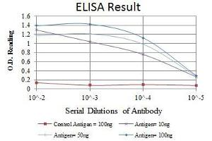 ELISA image for anti-HSPB1 antibody (Heat Shock 27kDa Protein 1) (ABIN969199)