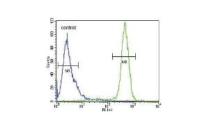 Flow Cytometry (FACS) image for anti-Sodium Channel, Voltage-Gated, Type I, beta (SCN1B) (AA 63-90), (N-Term) antibody (ABIN654602)