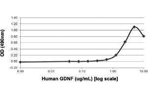 Image no. 1 for Glial Cell Line Derived Neurotrophic Factor (GDNF) protein (ABIN5570895)