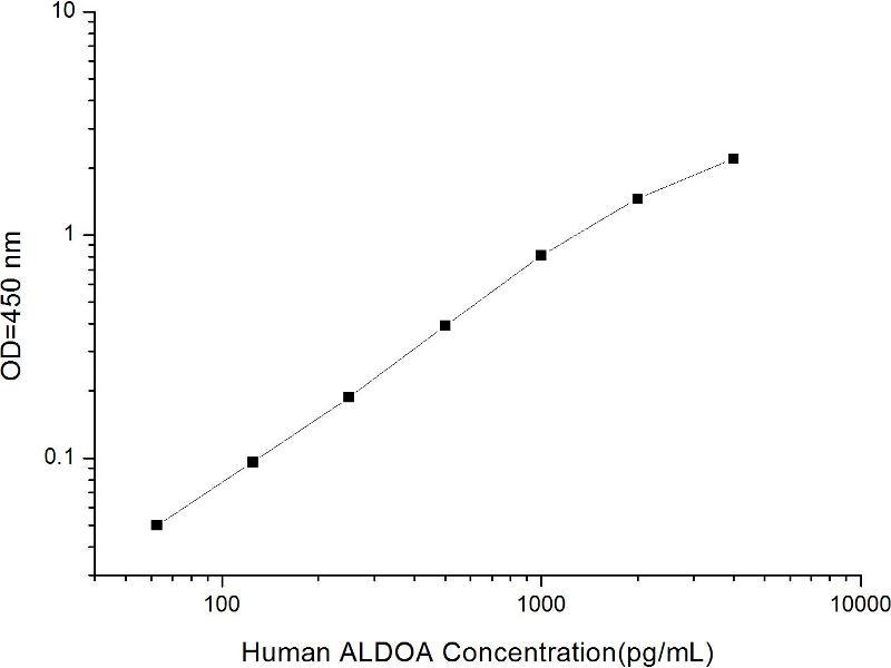 Aldolase A, Fructose-Bisphosphate (ALDOA) ELISA Kit (2)