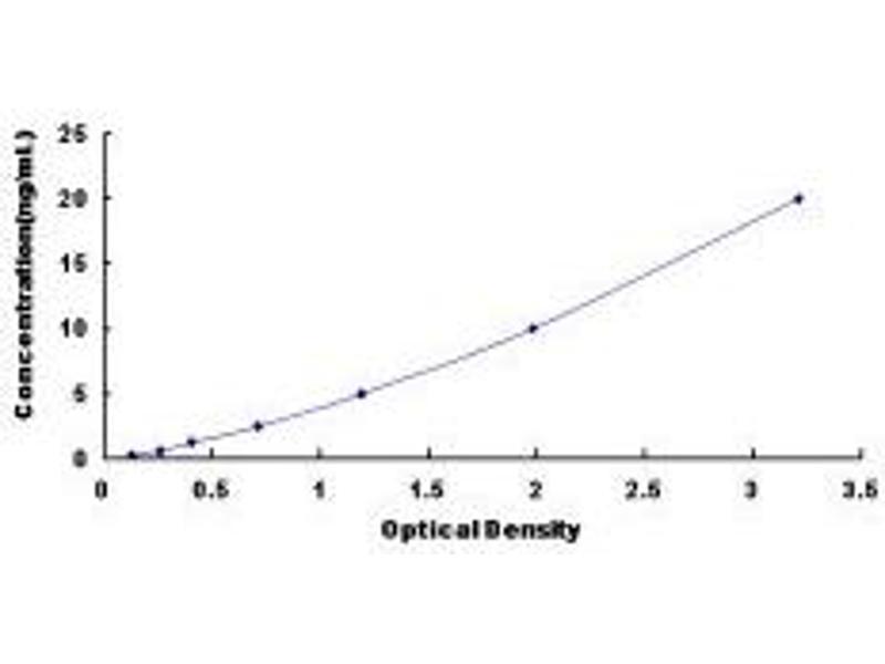 Estrogen-Related Receptor alpha (ESRRA) ELISA Kit