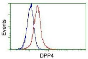 Flow Cytometry (FACS) image for anti-Dipeptidyl-Peptidase 4 (DPP4) antibody (ABIN4306068)