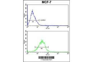 Flow Cytometry (FACS) image for anti-BID antibody (BH3 Interacting Domain Death Agonist) (AA 39-68) (ABIN388100)