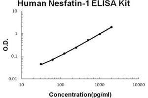 Image no. 1 for Nucleobindin 2 (NUCB2) ELISA Kit (ABIN1706085)