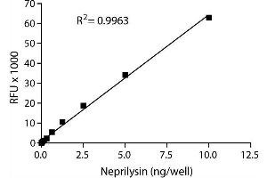 Image no. 1 for SensoLyte® 520 Neprilysin Activity Assay Kit (ABIN1882538)