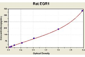 Image no. 1 for Early Growth Response 1 (EGR1) ELISA Kit (ABIN1114687)