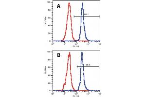 Flow Cytometry (FACS) image for anti-Linker For Activation of T Cells (LAT) (Cytoplasmic Domain) antibody (ABIN302069)