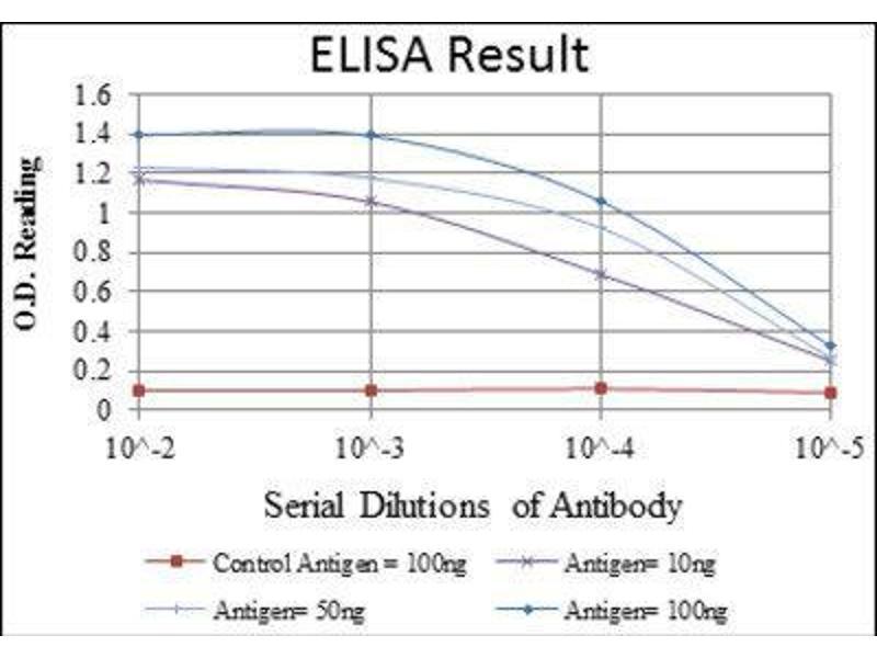 ELISA image for anti-C-JUN antibody (Jun Proto-Oncogene) (ABIN1846410)