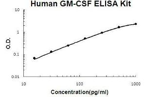 ELISA image for Colony Stimulating Factor 2 (Granulocyte-Macrophage) (CSF2) ELISA Kit (ABIN1672729)