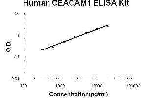 Image no. 1 for Carcinoembryonic Antigen-Related Cell Adhesion Molecule 1 (Biliary Glycoprotein) (CEACAM1) ELISA Kit (ABIN2859230)