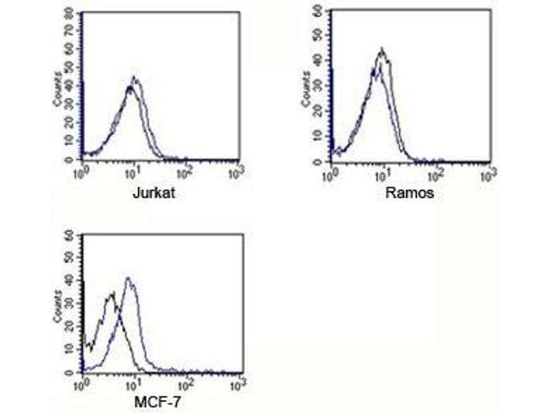 Flow Cytometry (FACS) image for 兔 IgG isotype control (APC) (ABIN3023747)