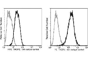 Image no. 1 for anti-Tumor-Associated Calcium Signal Transducer 2 (TACSTD2) (AA 1-274) antibody (FITC) (ABIN1996781)