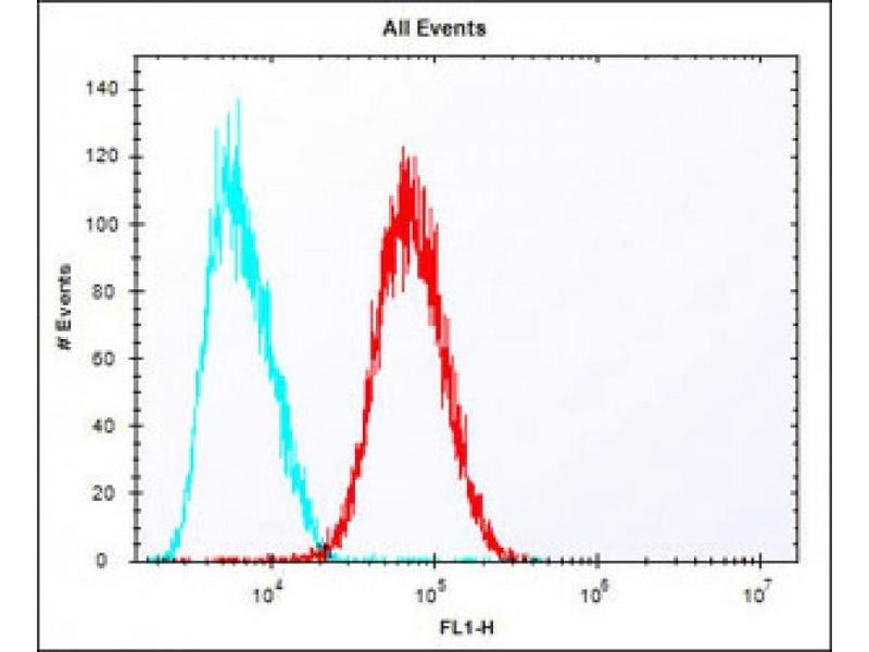 Flow Cytometry (FACS) image for anti-Epiregulin (EREG) (AA 137-165), (C-Term) antibody (ABIN650993)