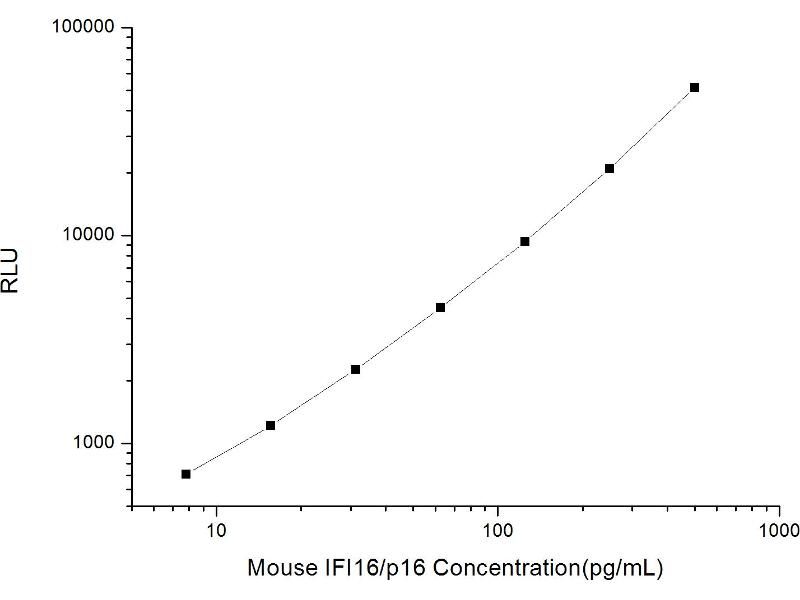 Interferon, gamma-Inducible Protein 16 (IFI16) CLIA Kit