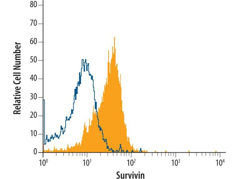 Flow Cytometry (FACS) image for anti-Baculoviral IAP Repeat-Containing 5 (BIRC5) (AA 1-142) antibody (ABIN4898957)