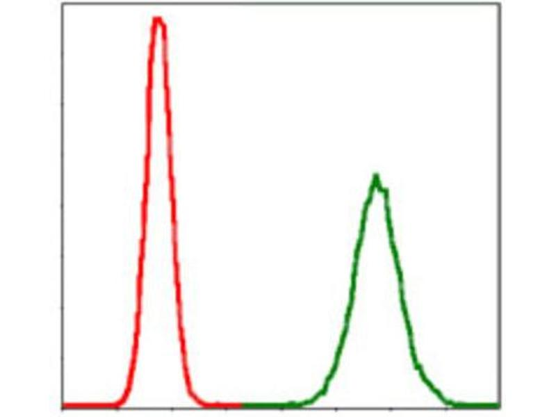 Flow Cytometry (FACS) image for anti-Protein Phosphatase 2A Activator, Regulatory Subunit 4 (PPP2R4) antibody (ABIN1844821)