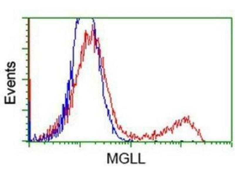 Flow Cytometry (FACS) image for anti-Monoglyceride Lipase (MGLL) antibody (ABIN4335290)
