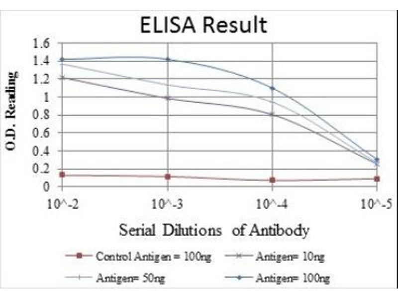 ELISA image for anti-Jun Proto-Oncogene (JUN) antibody (ABIN4285648)