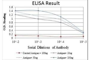ELISA image for anti-C-JUN antibody (Jun Proto-Oncogene) (ABIN4285648)