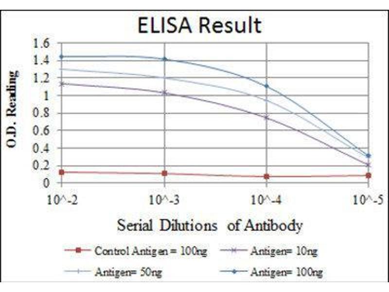Image no. 1 for anti-Teratocarcinoma-Derived Growth Factor 1 (TDGF1) antibody (ABIN1846225)