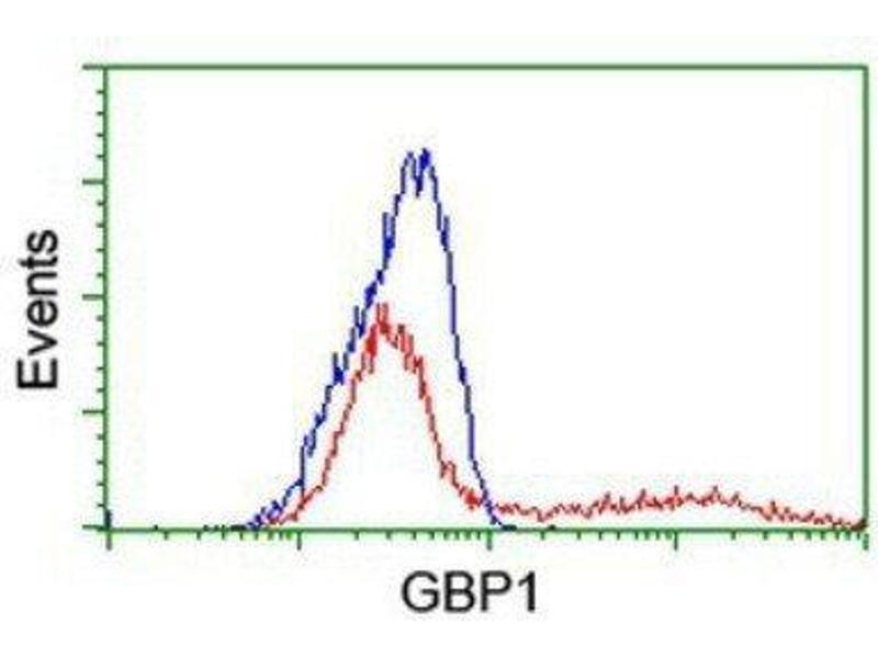 Flow Cytometry (FACS) image for anti-Guanylate Binding Protein 1, Interferon-Inducible (GBP1) antibody (ABIN4313698)