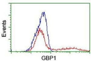 Flow Cytometry (FACS) image for anti-Guanylate Binding Protein 1, Interferon-Inducible (GBP1) antibody (ABIN4313698)
