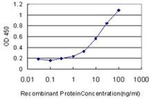 Image no. 1 for anti-Carbonic Anhydrase 12 (CA12) (AA 25-124) antibody (ABIN513932)