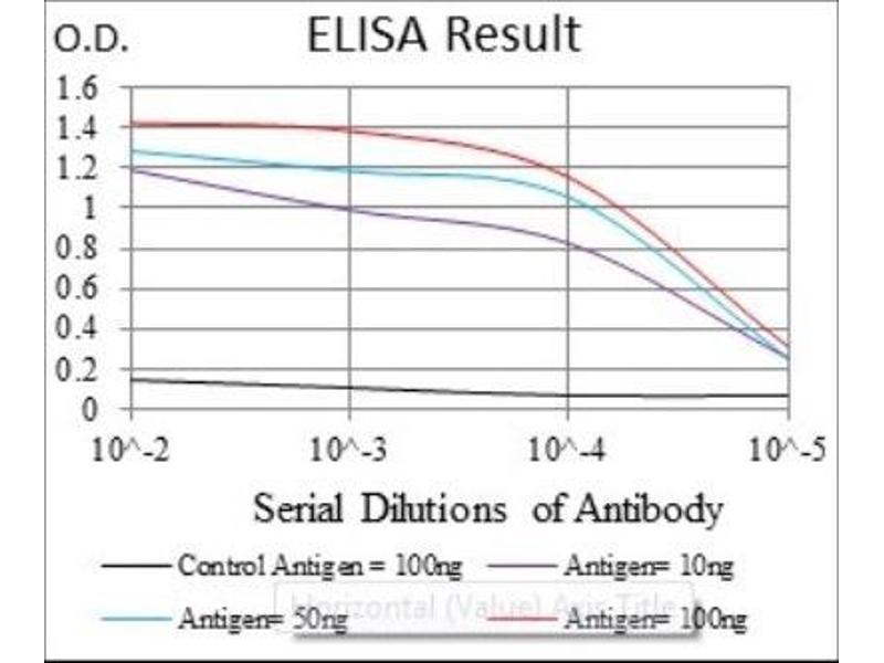 ELISA image for anti-Argininosuccinate Synthase 1 (ASS1) antibody (ABIN4281471)