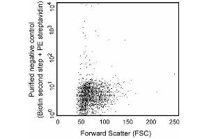 Flow Cytometry (FACS) image for anti-Dendritic Cells antibody (ABIN967479)