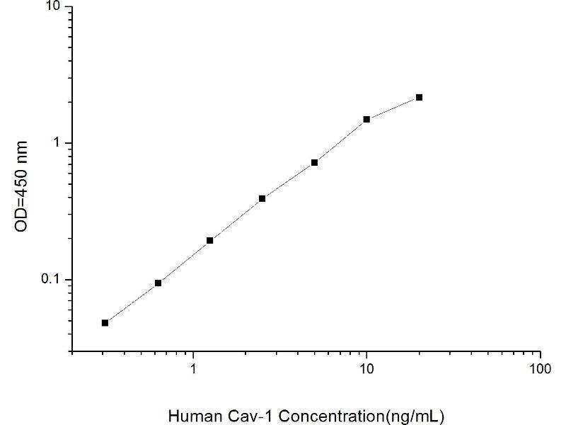 Caveolin 1, Caveolae Protein, 22kDa (CAV1) ELISA Kit (2)