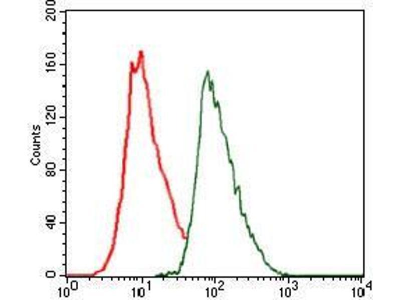 Flow Cytometry (FACS) image for anti-CCAAT/enhancer Binding Protein (C/EBP), alpha (CEBPA) antibody (ABIN4880638)